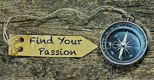 find your passison (2)